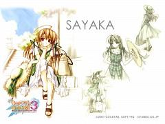Sayaka Takai
