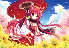 Shiramochi Sakura