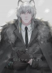 Silverash