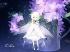 Snowdrop (Pixiv Fairy)