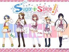Sugar+Spice!