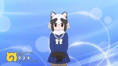 Tanuki (Kemono Friends)