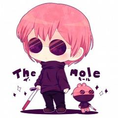 The Mole (HTF)