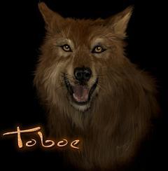 Toboe
