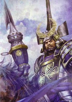 Tokugawa Ieyasu (Sengoku Musou)