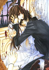Vampire Knight Illustrations